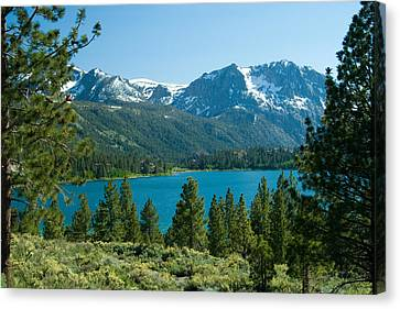 June Lake Loop Canvas Print by Celso Diniz