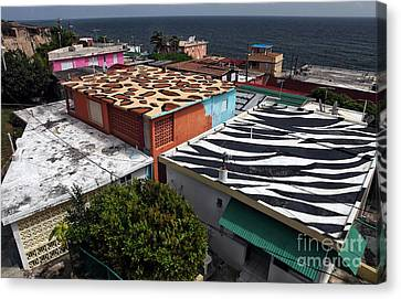 Jungle Roofs Canvas Print by John Rizzuto