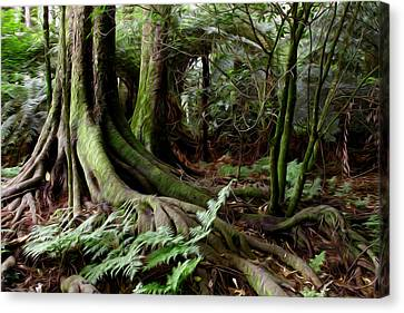 Jungle Trunks1 Canvas Print by Les Cunliffe