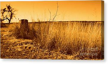 Just A View Canvas Print by Mickey Harkins