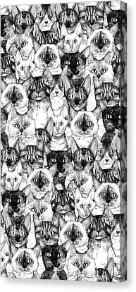 Just Cats Canvas Print by Sharon Turner