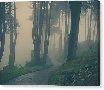 Just Whisper Canvas Print by Laurie Search