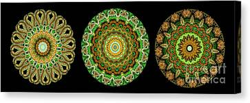 Kaleidoscope Ernst Haeckl Sea Life Series Triptych Canvas Print by Amy Cicconi