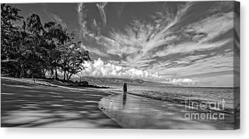 Kanahna Beach Maui Hawaii Panoramic Canvas Print by Edward Fielding