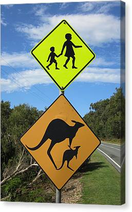 Kangaroo Crossing Canvas Print by Ramona Johnston
