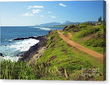 Kauai Coast Canvas Print by Kicka Witte