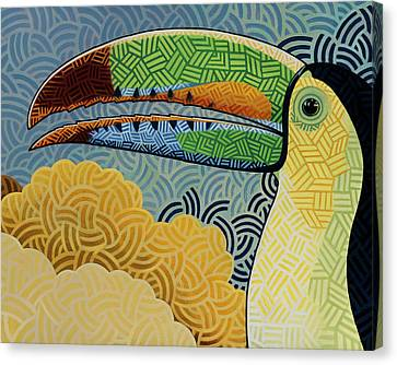 Keel-billed Toucan Canvas Print by Nathan Miller