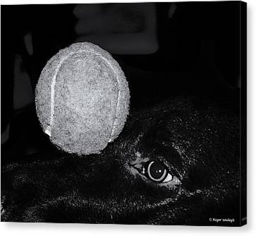 Keep Your Eye On The Ball Canvas Print by Roger Wedegis