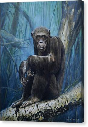 Keeper Of The Congo Canvas Print by Rob Dreyer AFC