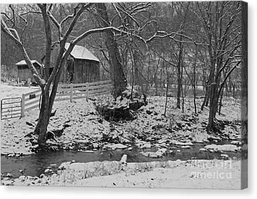 Kentucky Snow Canvas Print by Mary Carol Story