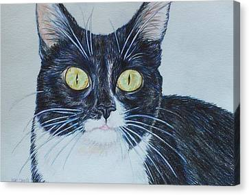 Kenzie Canvas Print by Beth Clark-McDonal