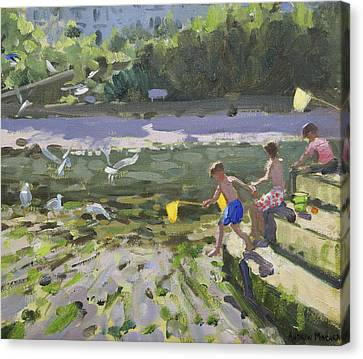 Kids And Seagulls Canvas Print by Andrew Macara