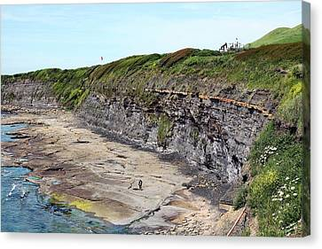 Kimmeridge Oil Field Canvas Print by Martin Bond