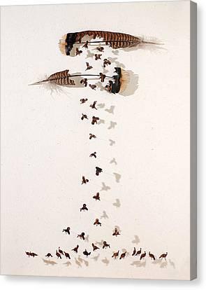 Kim's Turkeys Canvas Print by Chris Maynard