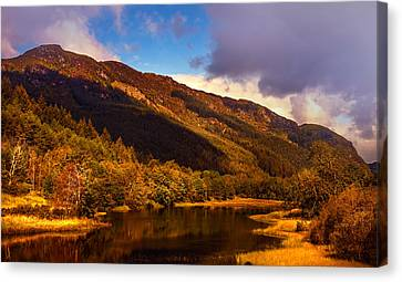 Kingdom Of Nature. Scotland Canvas Print by Jenny Rainbow