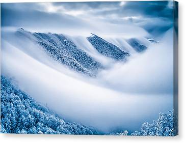 Kingdom Of The Mists Canvas Print by Evgeni Dinev