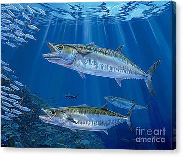Kingfish Reef Canvas Print by Carey Chen