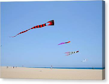 Kites Over Cabo Canvas Print by Christine Till