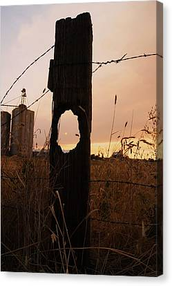 Knot Your Average Sunset Canvas Print by Angi Parks