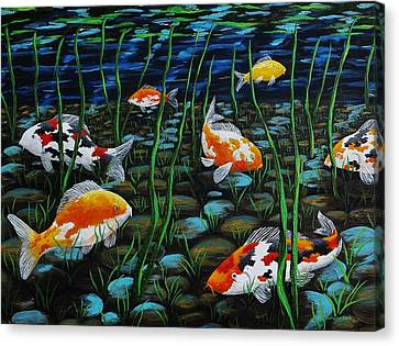 Koi Pond Canvas Print by Katherine Young-Beck