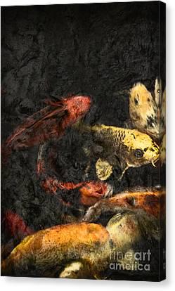 Koi Pond Canvas Print by Margie Hurwich