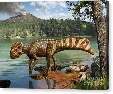 Koreaceratops Hwaseongensis Canvas Print by Julius Csotonyi