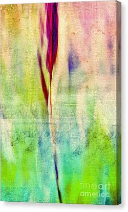 L Epi - S14at01 Canvas Print by Variance Collections
