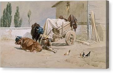 La Sieste Canvas Print by Richard Beavis