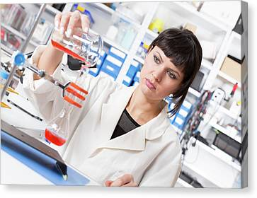 Lab Assistant Pouring Liquid In Lab Canvas Print by Wladimir Bulgar