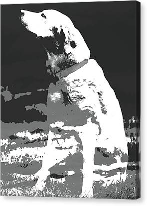 Labrador Smell The Air Canvas Print by Terry DeLuco