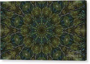 Labradorite -3- Mandala Canvas Print by Renata Ratajczyk