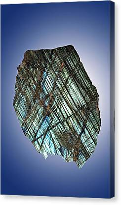 Labradorite Canvas Print by Charles D. Winters