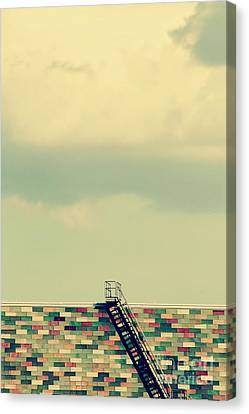 Ladder To Nowhere  Canvas Print by Trish Mistric