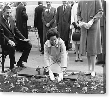 Lady Bird Johnson Planting Canvas Print by Underwood Archives
