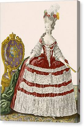 Ladys Court Gown In Dark Cherry Canvas Print by Pierre Thomas Le Clerc