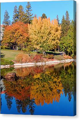 Lake At Davis Canvas Print by Jim Halas