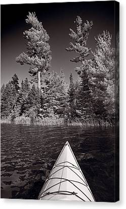 Lake Kayaking Bw Canvas Print by Steve Gadomski