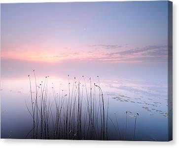 Lake Canvas Print by Keller