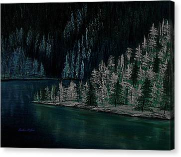 Lake Of The Woods Canvas Print by Barbara St Jean