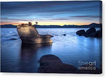 Lake Tahoe Bonsai Rock Canvas Print by Dianne Phelps