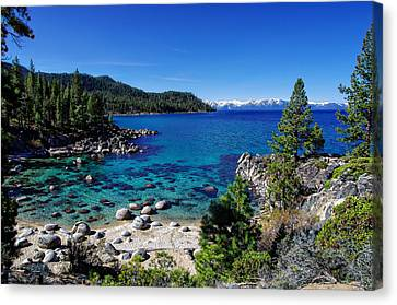Lake Tahoe Springscape Canvas Print by Scott McGuire
