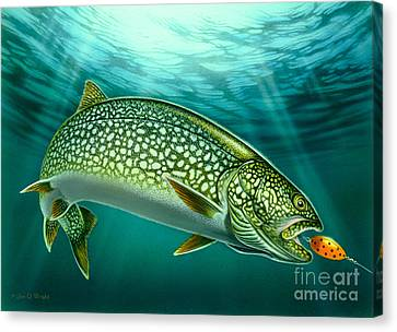 Lake Trout And Spoon Canvas Print by Jon Q Wright