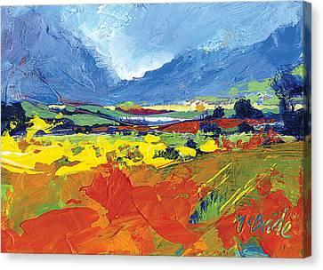 Lakeland Splash Canvas Print by Neil McBride