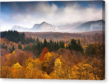 Land Of Illusion Canvas Print by Evgeni Dinev