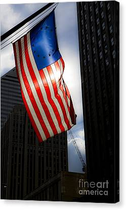 Land Of The Free Canvas Print by Leslie Leda