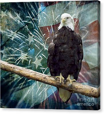 Land Of The Free Canvas Print by Terry Weaver