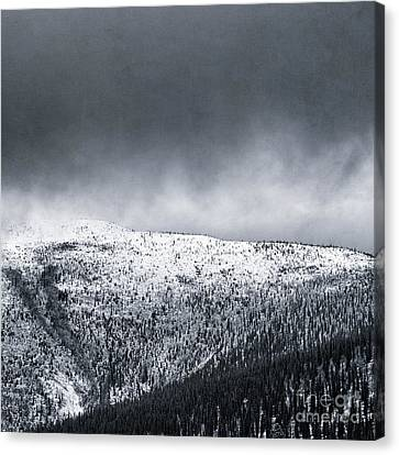 Land Shapes 2 Canvas Print by Priska Wettstein