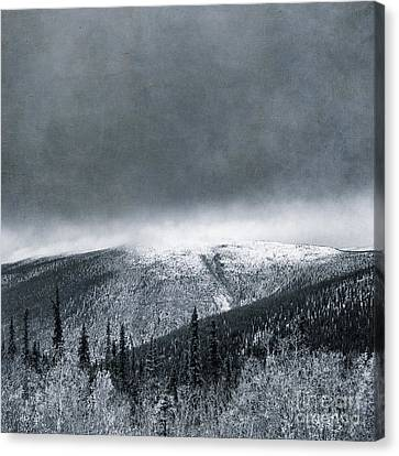 Land Shapes 3 Canvas Print by Priska Wettstein
