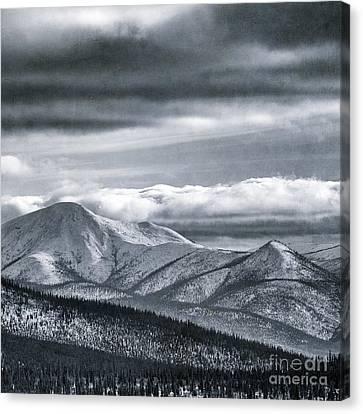 Land Shapes 4 Canvas Print by Priska Wettstein