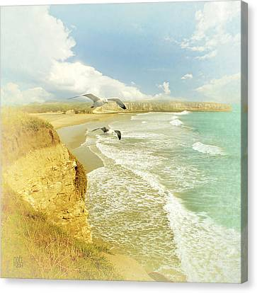 Land's End Canvas Print by Catherine Noel